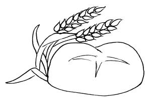 disegno pane